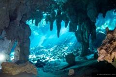 Cenoten, Gran Cenote, Mexiko, Tauchen, Yucatan-2